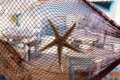 Fischernetz verziert mit Starfish und Muschel am traditionellen griechischen Restaurant durch Strand und Fischereihafen Stockfotografie