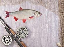 Fischernetze und Angelrute Stockfotografie