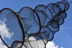 Fischfallen Lizenzfreie Stockfotografie