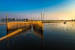 Fischfangen Lizenzfreie Stockfotografie