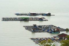 Fischfarm lizenzfreie stockfotos