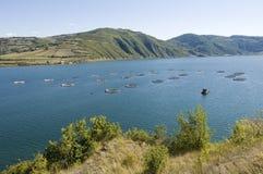 Fischfarm. Die Türkei-Samsun Stockfotos