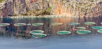 Fischfarm im Meer Stockfotos