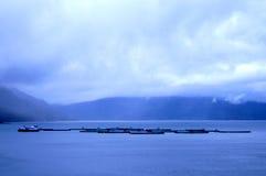 Fischfarm in Norwegen Lizenzfreie Stockbilder