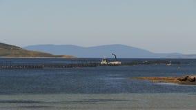 Fischfarmstifte stock footage