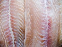 Fischfilet   Lizenzfreies Stockfoto