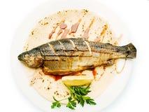 Fischfutter Lizenzfreie Stockfotos