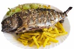 Fischgericht ein Thunfisch gebraten Lizenzfreies Stockfoto