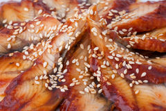 Fischgericht, Nahaufnahme Lizenzfreies Stockfoto