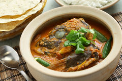 Fischhauptcurry Stockbild