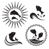 Fischherausspringen des Wassers Lizenzfreie Stockfotos