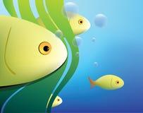 Fischhintergrund Lizenzfreies Stockbild