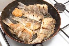 Fischkarpfen wird in einer Bratpfanne gebraten Lizenzfreie Stockbilder
