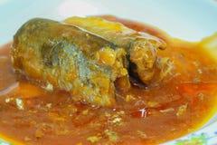 Fischkonserven in der Tomatensauce Stockfoto
