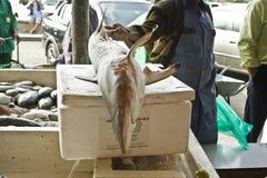 Fischmarkt Stockbild
