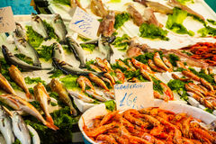 Fischmarkt - frische Meeresfrüchte Stockbilder