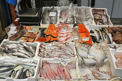 Fischmarkt in Hong Kong Stockfotos