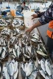 Fischmarkt in Palermo, Sizilien Lizenzfreie Stockfotos