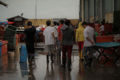 Fischmarkt in Sabah Stockfoto