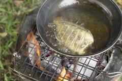 Fischrogen kochen die Fische auf dem Kampieren im Wald Stockfotografie