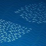 Fischschwarm im Meer Lizenzfreies Stockbild