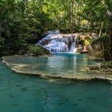 Fischschwimmen im Aquawasser an der Unterseite einer Reihe schöner kurzer Wasserfälle im dichten Wald von Erawan stockfoto