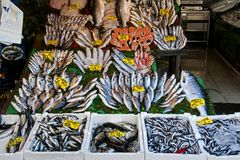 Fischshop in Istanbul Stockfotografie
