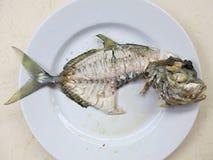 Fischskelett auf einer Platte Knochen von tropischen Fischen lizenzfreies stockfoto
