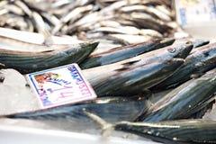 Fischstand lizenzfreie stockfotografie
