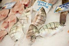 Fischstand stockbilder