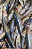 Fischstand im Straßenmarkt Stockfotos