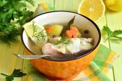 Fischsuppe vom Seebarsch Lizenzfreie Stockfotos