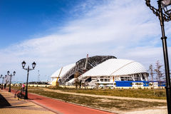 Fischt in Sochi Royalty Free Stock Image