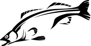 Fish. Vector illustration of a fish. Black and white Stock Photography