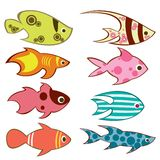 Fish. Illustration of colorful fish isolated over white Royalty Free Stock Images
