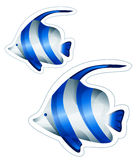 Fish. Drawing of blue fish in a white background Stock Photo