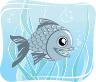 Fish. Vector illustration of a fish Stock Photo