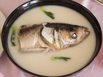 Fish. Gourmet make food very entice Royalty Free Stock Photos