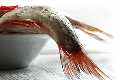 Fish. Ready for cooking in the kitchen Royalty Free Stock Photo