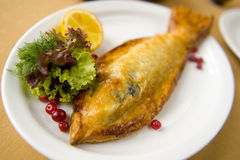Fish. Grilled fish with vegetables Salmon in pastry royalty free stock photography