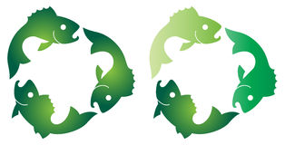 Fish. Illustration of fish images on recycle symbol Royalty Free Stock Photography