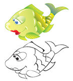 Fish. Fun cartoon fish isolated on white. Color and contour drawing Stock Photo