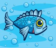 Fish. A fish swimming in the water surrounded by bubbles Stock Photo