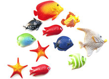 Fish Royalty Free Stock Photography