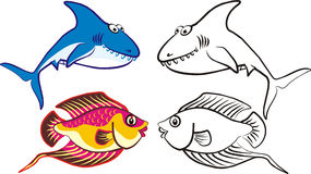 Fish 2 Royalty Free Stock Photography