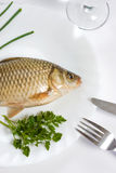 Fish. The fish is lying on the white plate Stock Photos