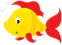 Fish. Vector clip-art illustration of a yellow and red coral fish Royalty Free Stock Photos