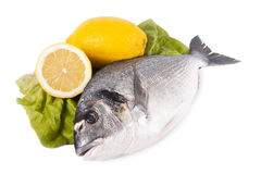 Fish. Natural fish isolated on white background, food Royalty Free Stock Images