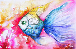 Fish. Colorful fish with small fish watercolor painted Stock Image