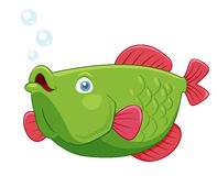 Fish. Illustration of fish  on white Stock Photography